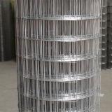 Quadratisches Loch-Form-Kurbelgehäuse-Belüftung geschweißtes Draht-Gewebe hergestellt in China