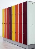 新しいデザインWoodgrainカラー官庁原簿のロッカー