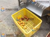 4개 수준 자동적인 감자 토마토 호두 분류 및 분류 기계