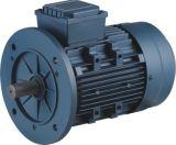 Y2 Dreiphasenmotor, Maschine für Wicklungs-elektrischen Motor