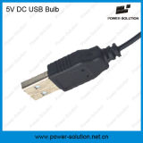 Bulbo solar do USB