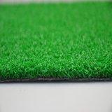 مموّن من عشب اصطناعيّة لأنّ يضع اللون الأخضر [غف]