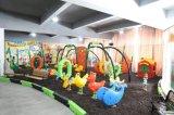Unterhaltungs-Innen-/im Freienspielplatz-Gerät des Beifall-Yl-X139
