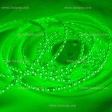 IP65 Waterproof SMD3528 LED Strip Green Color pour une utilisation en extérieur