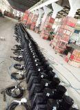Grue électrique de Ltd63 380V pour la plate-forme suspendue