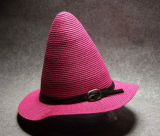 O chapéu de palha Multicolor o mais novo do pináculo do projeto da forma 2015