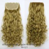 El clip mezclado de la peluca del color junta las piezas del clip en la extensión del pelo