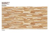Digital out Door Ceramic Wall Tiles (66351)