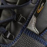Zapatos de seguridad del precio bajo