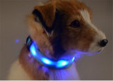 Collor LED del animal doméstico con las luces de seguridad para mascotas