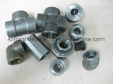 위조된 Steel High Pressure Screwed와 Sw Fittings