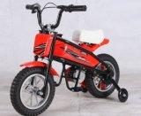 Elektrisches Kind-Taschen-Fahrrad (SQ200DH)