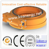 Mecanismo impulsor de la ciénaga de ISO9001/Ce/SGS Se14 con las personas profesionales del R&D