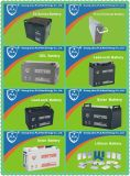 Wartungsfreier Speicher-nachladbare Batterie der Qualitäts-12V26ah