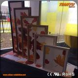 Het aangepaste Frame van het Aluminium van de Vertoning van het Profiel Textiel