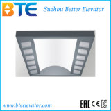 Cer-beständige und gute Qualitätspassagier-Aufzug mit kleinem Maschinen-Raum