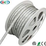 SMD5050 IP67 impermeabilizzano l'indicatore luminoso di natale del LED con i certificati di ETL