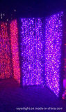 Les lumières féeriques Christams de cascade à écriture ligne par ligne de l'usager DEL de décoration de Noël décorent le fournisseur