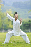 Весна пеньки людей Kongfu хиа Tai высокосортная Bamboo & одеяние лета вскользь