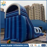Sosta gonfiabile dell'acqua del PVC/trasparenza di acqua gonfiabile usata con il raggruppamento