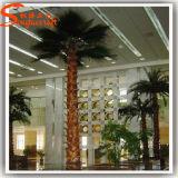 Guangzhou Fabricant intérieure Décor artificielle Palm Tree