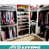옷장 옷장 (AIS-W179)에 있는 유일한 디자인 현대 도보