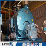 Singola caldaia a vapore sgranata tubo Acqua-Infornata dei timpani con 0.7MW