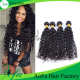 Preiswertes Malaysian Body Wave Grade 8A indisches Virgin Hair