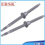 High Performance Ball Screw with Ball Screw Nut