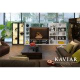 Мебель комнаты самомоднейшего типа живущий (HF-03)