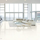 Floor Nano Porcelain Polished Tile in Oceanland