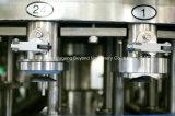 o PNF 2-in-1 pode linha de processamento de enchimento da cerveja