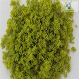 10kg Per Bag Fine Tree Powder für Landscaping