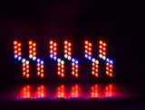 La DEL économiseuse d'énergie élèvent 1000W léger avec Veg et fleurissent