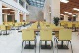 多彩な金属のレストランのスタック可能食堂の椅子