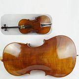 Corpo superiore intagliato dell'acero del Brown giallo della qualità superiore tutto il violoncello solido