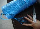 Corde traitée aux UV de pp