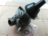 Pompe à eau de pièce de moteur de Cummins M11 ISM Qsm 3803403 2882144 4955705