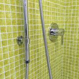 Australisches Wateramrk genehmigte die einfache zusammengebaute eingestellte Messingdusche (12B-601)