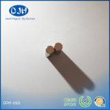 Permanenter kleiner runde Form-Neodym Moto Magnet