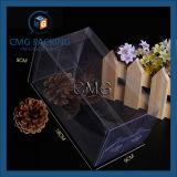Rectángulo plástico del PVC del pequeño claro de encargo (CMG-PVC-022)