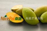 Secado por aspersión Jugo de fruta natural Bebida Mango Juice Powder