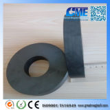 Y35 D110xd45X20mm Large Anisotropic Ring Ferrite Magnet