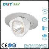 調節可能な天井は20W穂軸LEDの点Downlightを埋め込む