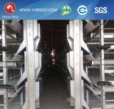 15のための金属線の網の鶏の卵のケージ、000羽の鳥の供給ライン(A-4L120)