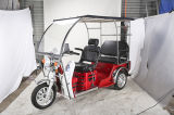 Motocicleta de tres ruedas para Handicapped