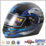 Профессиональный шлем мотоцикла/мотовелосипеда полной стороны с холодной картиной (FL122)