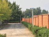 Éclairage routier solaire Integrated extérieur sec de jardin de DEL