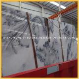 Opgepoetste Nieuwe Witte Marmeren Tegels voor Keuken/de Vloer en de Muur van de Badkamers