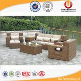 Weidenrattan-Schnittaufenthaltsraum-Sofa-gesetzter Garten-im Freienmöbel (UL-2011)